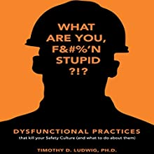Dysfunctional Practices: That Kill Your Safety Culture (and What to Do About Them) Audiobook by Timothy D. Ludwig PhD Narrated by David Stifel