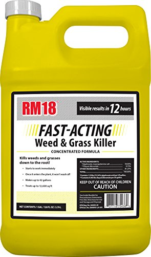 RM18 Fast-Acting Weed & Grass Killer Herbicide, 1-gallon