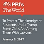 To Protect Their Immigrant Residents Under Trump, Some Cities Are Arming Them With Lawyers | Tiziana Rinaldi
