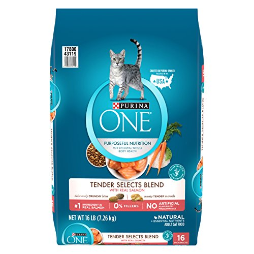 Purina ONE Tender Selects Blend With Real Salmon Adult Dry Cat Food - 16 lb. Bag by Purina ONE