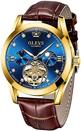 OLEVS Men Watch Tourbillon Automatic Self Wind Watch Mechanical Classic Hollow Waterproof Luminous Leather Band Wrist Watch