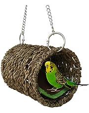 Der papagei kokosnuss - NEST NEST hamster eichh?rnchen fortpflanzung warme NEST.