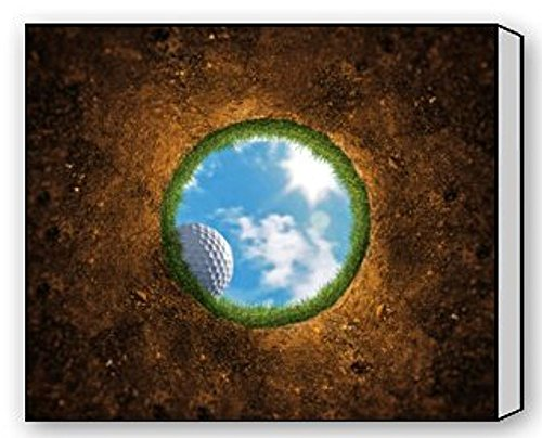(EZON-CH Modern Art Funny Golf Sports Pictures Printed On Canvas Wall Art For 20IN X 25IN)