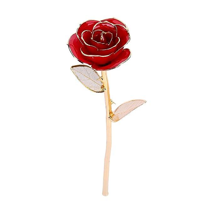 Rosa sumergida en oro de 24 k, siempre conservada Tallo largo Rosa con una hoja de oro Regalo perfecto para el Día de San Valentín Amor para siempre ...
