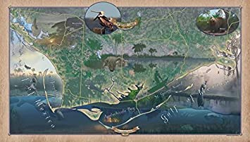 Apalachicola Florida Map.Amazon Com The Forgotten Coast Of Florida Apalachicola