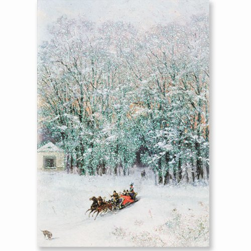 (Sparkle Sleigh Ride Holiday Boxed Cards (Christmas Cards, Holiday Cards, Greeting Cards))
