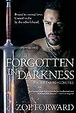 Forgotten In Darkness (Scimitar Magi Book 2)