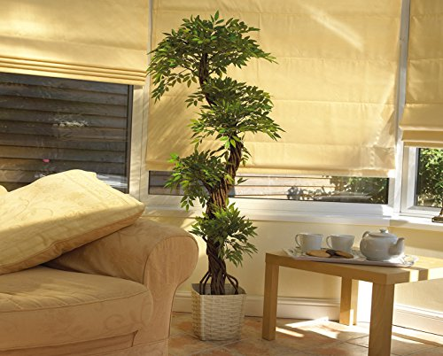 vert lifestyle handmade japanese fruticosa indoor tree. Black Bedroom Furniture Sets. Home Design Ideas