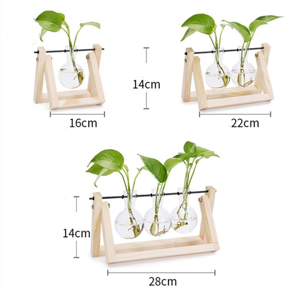 Doolland Jarrón de Vidrio para jardinería, Planta de hidroponía (Original Wood+3 Bulbs)