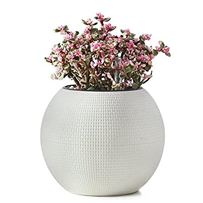 Plastic Round Self Watering Planter - African Violets, Herb Pot for Plants,Water Indicator,Modern Decorative Planter Pot for Plants Flowers, Herbs, Vegetables, Tropical.