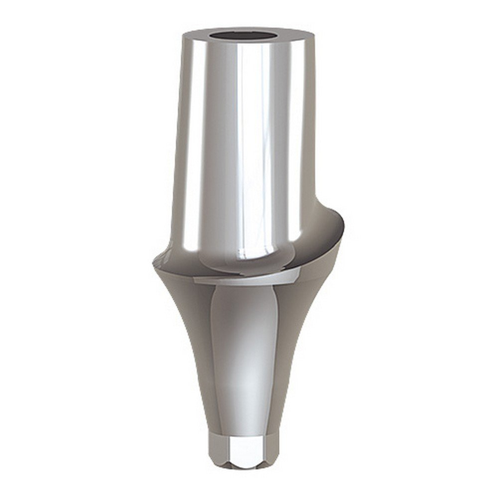Paltop 40-72064 Conical 4 mm Straight Anatomic Abutment Ti, Concave, 6 mm Diameter