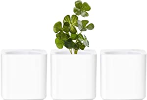GardenBasix 4 inch Self Watering Violet Planter Flower Pots Indoor Home Garden Modern Decorative Pot for Potting Small House Plants African Violet Cactus Herbs Succulents Set of 3 (White.)