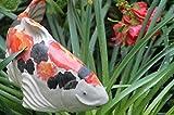 Fish in the Garden Ceramic Outdoor Garden Koi - Kohaku and Black - Large Right
