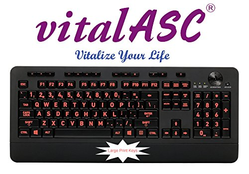 Vital-AZ Backlit USB Keyboard Large Print Keys + 5 Interchangeable Backlight Color - Wired
