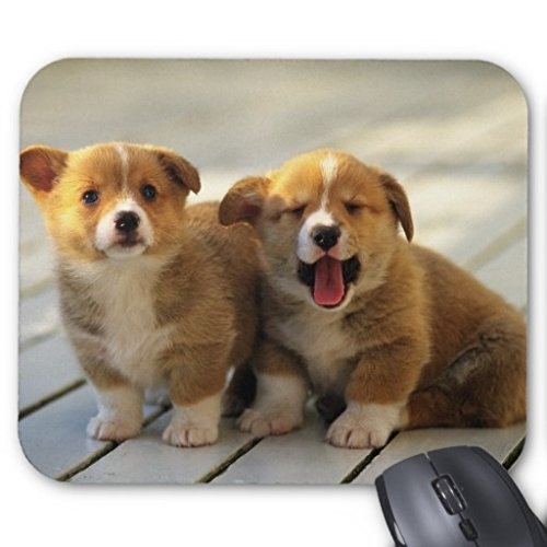 Two yellow dogs Allen Custom Unique Mouse?Pad (Allen Halloween 2017)