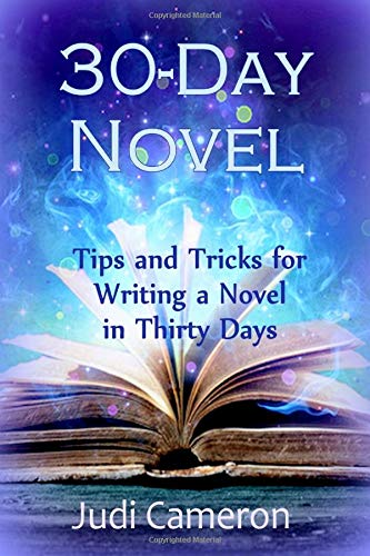 Read Online 30-Day Novel: Tips and Tricks for Writing a Novel in Thirty Days (Volume 2) pdf epub