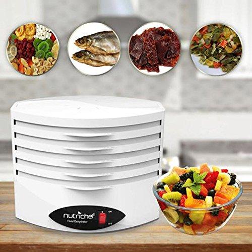 Electric Countertop Food Dehydrator Machine - 5-Tray Profess