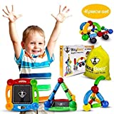 BizyBeez MagStix Sensory Magnetic STEM Toys - Building Set for Kids - 41 pcs - Educational Creative and Imaginative Fun for Boys and Girls Age 3 and up - Hours of Independent Play