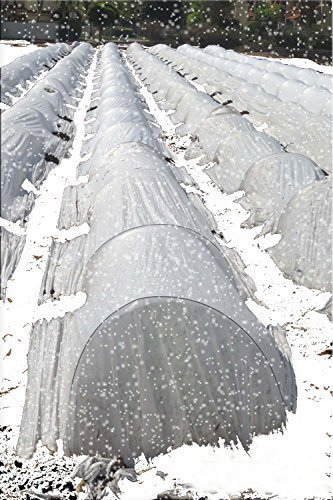 Agfabric Warm Worth Roll Heavy Floating Row Cover & Plant Blanket, 0.9oz Fabric of 6x250ft for Frost Protection, Harsh Weather Resistance& Seed Germination by Agfabric (Image #7)