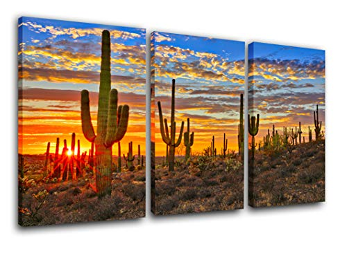 TUMOVO Native America Decor Arizona Desert Paintings for Living Room Saguaro Cacti Mountains Pictures Canvas Wall Art Modern Artwork Framed Gallery-Wrapped Stretched Ready to Hang(24''x36'')