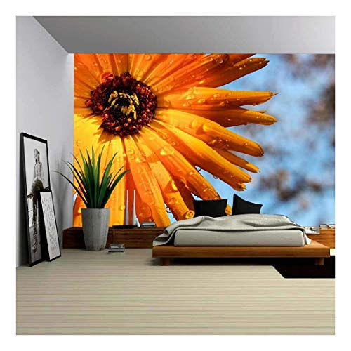 wall26 - Orange Flower After The Rain - Removable Wall Mural | Self-Adhesive Large Wallpaper - 100x144 ()