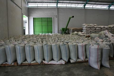 5 LBS Sumatra Suku Batak Unroasted Green Coffee Beans