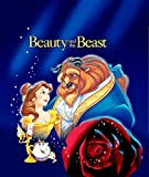 Beauty and the Beast Customized 14x17 inch Silk Print Poster/WallPaper Great Gift