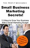 Small Business Marketing Secrets: 13 Tips for Small Business Growth on a Small Budget