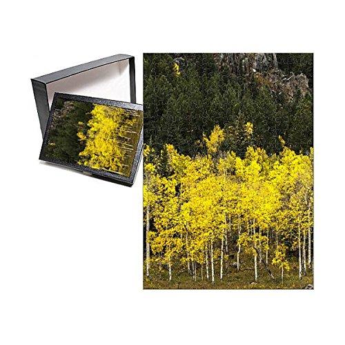 【お気に入り】 フォトジグソーパズルof Turning Aspen Leaves Turning near near theコロラド川、コロラド州、USA Leaves B076VDB93W, 大同ネットSHOP:2e69db85 --- a0267596.xsph.ru
