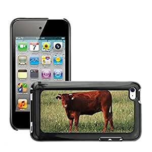Etui Housse Coque de Protection Cover Rigide pour // M00110686 Vaca Beef Cattle Pasto Animal // Apple ipod Touch 4 4G 4th