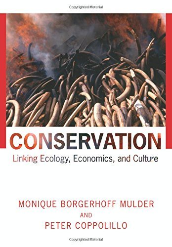 Conservation  Linking Ecology  Economics  And Culture