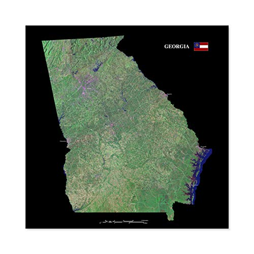 Map County Satellite USA State Flag Georgia Replica Large Wall Art Poster Print Thick Paper 24X24 Inch