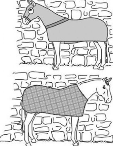 Horse Sewing Patterns - Suitability 7840 Horse Body Cover and Stretch Sheet Equestrian Sewing Pattern