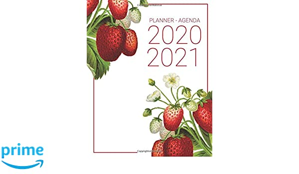 Planner - Agenda 2020 - 2021: Red Strawberry Two Year Daily ...