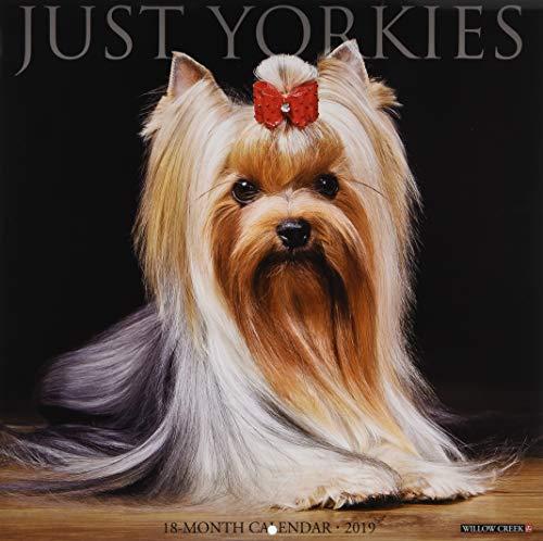(Just Yorkies 2019 Wall Calendar (Dog Breed Calendar))
