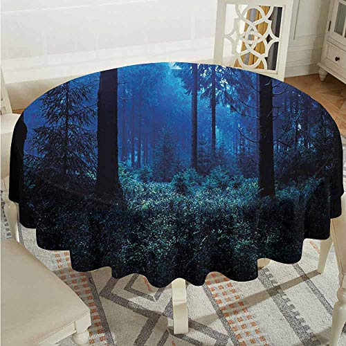 XXANS Stain Round Tablecloth,Night,Misty Nature Scene of Autumn Forest in Thuringia Germany Tranquil Woodland,High-end Durable Creative Home,47 INCH,Blue Green White