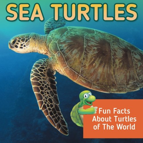 25 Of The Most Engaging Sea Turtle Books For Kids