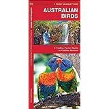 Australian Birds: A Folding Pocket Guide to Familiar Species