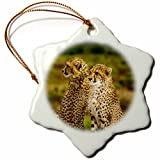 Sven Herkenrath Animal - African Cheetah Gepard in the Free Nature Wildlife - 3 inch Snowflake Porcelain Ornament by Valentine Herty