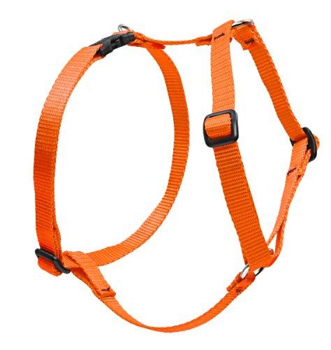 "LupinePet Basics 1"" Blaze Orange 20-32"" Adjustable Roman Dog Harness for Medium Dogs"