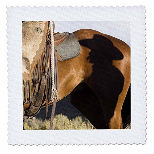 - 3dRose qs_93513_1 USA, Oregon, Seneca, Ponderosa Ranch, Cowboy-US38 BJA0251-Jaynes Gallery-Quilt Square, 10 by 10-Inch