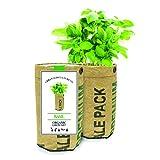 Urban-Agriculture The Company - Basil Organic Grow Kit