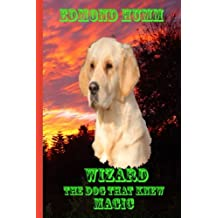 WIZARD the dog that knew MAGIC: The dog that knew Magic. (Magic adventures) (Volume 3)