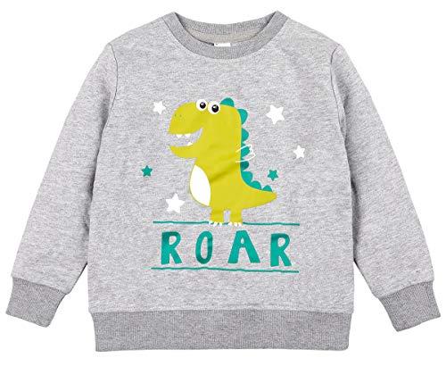 beautyin Kids Toddler Dinosaur Print Cute Sweatshirt Long Sleeve Pullover Shirt 3 ()