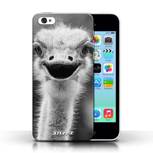 Kobalt® protector duro de nuevo caso / cubierta para el Apple iPhone 5C   Avestruz/UEM Diseño   Animales de zoológico mono colección