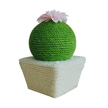 DGSD Rascador para Gatos Llamado Bola de Cactus Muebles para ...