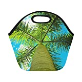 Insulated Neoprene Lunch Bag Palm Sky Vacation Island Tree Travel Tropical Large Size