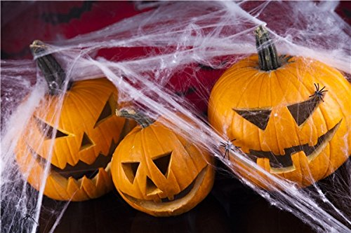 2 Pack Halloween Spider Web Decoration And 100 Pack Small Plastic Spiders (Halloween Hoaxes)