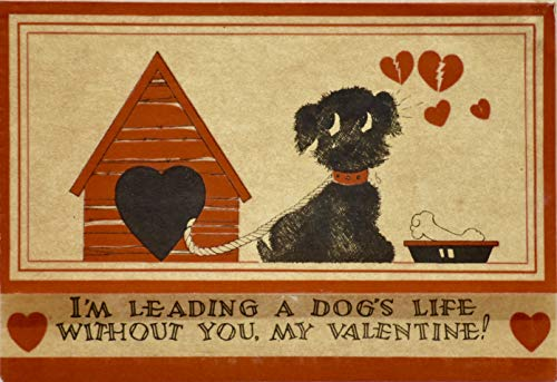 "1919 - Valentine's Day Card -""I'm Leading A Dog's Life Without You, My Valentine!"" - Parchment Style Paper - Unused - Collectible"