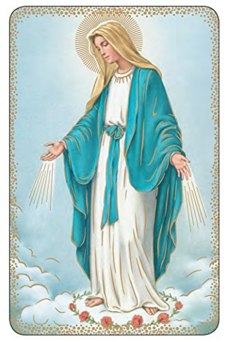 Rosary Cards Prayer (Lot of 10- The Mysteries of the Rosary Prayer Card 3 3/8 in X 2 3/16 in Made in Italy)